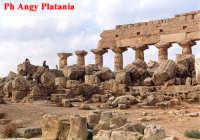 Selinunte - Templi e Necropoli  - Selinunte (2346 clic)