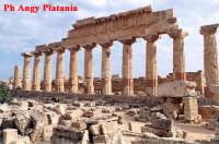 Selinunte - Templi e Necropoli  - Selinunte (2248 clic)