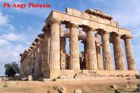 Selinunte - Templi e Necropoli  - Selinunte (2129 clic)