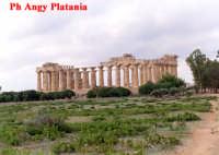 Selinunte - Templi e Necropoli  - Selinunte (1994 clic)