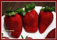 ti mangerei come una fragola.... uno dei frutti più buoni e con i colori più accattivanti... ph angela platania  - Catania (1171 clic)