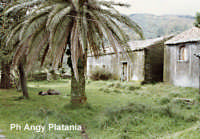 Zafferana Etnea - Priorato di San Giacomo  - Zafferana etnea (3676 clic)