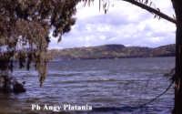 Regalbuto - Lago Pozzillo   - Regalbuto (2743 clic)
