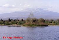 Veduta dall'ETNA dal parco Zoo  - Catania (3049 clic)