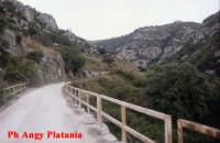 Pantalica - Valle dell'ANAPO  - Sortino (5383 clic)