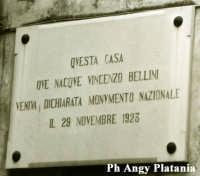 Catania - Museo Belliniano  - Catania (1849 clic)