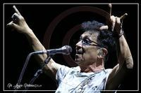 Sono solo canzonette... Edoardo Bennato in concerto  - Catania (427 clic)