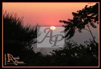 sempre lei... Etna Ph Angela Platania  - Zafferana etnea (2147 clic)