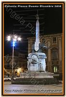 Notturno... L'elefante illuminato dal blu... Ph Angela Platania  - Catania (2824 clic)