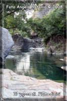 laghetto artificiale di Fiumedinisi- Ph Angela Platania  - Fiumedinisi (4690 clic)
