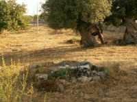 Reperto archeologico Reperto archeologico  - Ispica (7001 clic)