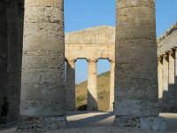 Tempio di segesta - interno -   - Segesta (1638 clic)