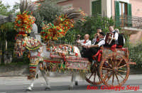 viagrande : carretto siciliano  - Viagrande (6780 clic)
