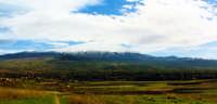 etna lato nord: paesaggio invernale  - Bronte (3419 clic)