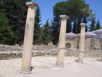 VILLA ROMANA DEL CASALE  - Piazza armerina (2696 clic)