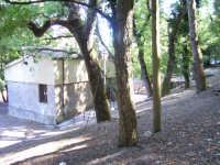 Viale delle Pinete (Caseggiato che ospita il bar del Tennis Club)  - Erice (2936 clic)