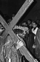 Via Crucis vivente 2011   - Ferla (2480 clic)