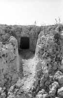 La necropoli risale alla media età del bronzo (XV ÷ XIII sec. a.C.). Comprende ca. 450 tombe a grotticella artificiale, dotate di vestibolo costituito, nella maggior parte dei casi, di un semplice pozzetto, o dotato di un dromos o corridoio (come nella foto). Le camere sepolcrali sono a pianta circolare con soffitto a volta e, in alcuni casi, nicchie alle pareti. La sepoltura avveniva per inumazione.  - Thapsos (5526 clic)