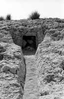 La necropoli risale alla media età del bronzo (XV ÷ XIII sec. a.C.). Comprende ca. 450 tombe a grotticella artificiale, dotate di vestibolo costituito, nella maggior parte dei casi, di un semplice pozzetto, o dotato di un dromos o corridoio (come nella foto). Le camere sepolcrali sono a pianta circolare con soffitto a volta e, in alcuni casi, nicchie alle pareti. La sepoltura avveniva per inumazione.  - Thapsos (5591 clic)