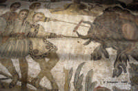 Mosaici di Villa del Casale.  - Piazza armerina (4552 clic)