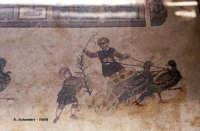 Mosaici di Villa del Casale.  - Piazza armerina (5248 clic)