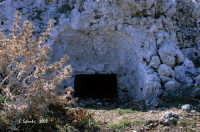 La necropoli risale alla media età del bronzo (XV ÷ XIII sec. a.C.). Comprende ca. 450 tombe a grotticella artificiale, dotate di vestibolo costituito, nella maggior parte dei casi, di un semplice pozzetto, o dotato di un dromos o corridoio. Le camere sepolcrali sono a pianta circolare con soffitto a volta e, in alcuni casi, nicchie alle pareti.  La sepoltura avveniva per inumazione.  - Thapsos (6630 clic)