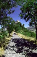 Panorama dal Belvedere. Il sentiero che porta alla terrazza del Belvedere e, sullo sfondo, la chiesa di S. Maria di Loreto.  - Petralia soprana (4776 clic)