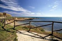 La costa verso Cala Mosche.   - Vendicari (3591 clic)