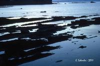La costa siracusana presso Punta della Mola. (2088 clic)