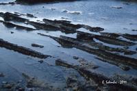 La costa siracusana presso Punta della Mola. (2248 clic)