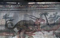 Mosaici di Villa del Casale.  - Piazza armerina (4312 clic)