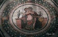Mosaici di Villa del Casale.  - Piazza armerina (4502 clic)