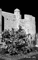 Il castello di Brucoli. (1113 clic)