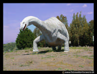 Parco Zoo di Paterno'. Il dinosauro.  - Paternò (8878 clic)