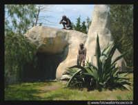 Parco Zoo di Paterno'. Uomini preistorici.  - Paternò (31110 clic)