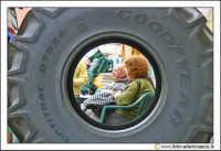 Cerda: Sagra del Carciofo 25 Aprile 2005. Ruota di trattore.  - Cerda (3649 clic)