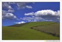 Caltanissetta: Campagna nissena. La concorrenza all'ormai noto sfondo del Desktop di Windows XP, questo pero' è... made in sicily!  - Caltanissetta (5135 clic)