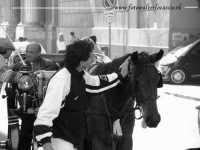 Una scena di tenerezza tra un passante e un Cavallo. Da notare la linguetta del cavallo che se la