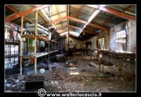Caltanissetta: Miniera Trabonella. Reportage sulle miniere di zolfo di Caltanissetta.Vecchie attrezzature abbandonate.  - Caltanissetta (2191 clic)
