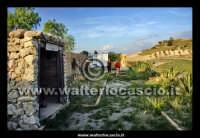 Caltanissetta. Reportage sulle miniere di Zolfo di Caltanissetta. Cimitero dei Carusi, morti nelle miniere. Veduta d'insieme.  - Caltanissetta (2740 clic)