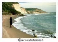 Butera - Falconara : Spiaggia di Falconara, nei pressi del Castello di Falconara. Solitudine nella spiaggia. Foto Walter Lo Cascio www.walterlocascio.it   - Butera (9087 clic)