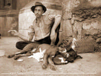 Uno strano trio: un cane, un gatto e un coniglio,che riposano tranquillamente con il loro padrone. D