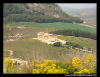 Il tempio.  - Segesta (3641 clic)