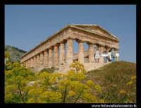 Il tempio.  - Segesta (3150 clic)