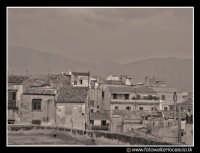 Palermo: Tetti del centro storico. PALERMO Walter Lo Cascio