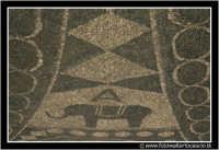 Catania: Giardino Vincenzo Bellini. Particolare della pavimentazione dei viali della Villa. Al centro il simbolo di Catania.... l'ELEFANTE.  - Catania (2255 clic)