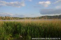 Lago di Pergusa(EN).  - Pergusa (4521 clic)