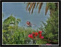 Isolabella: Pescatore tra i rami #2.  - Taormina (3086 clic)