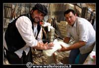 Vizzini: SAGRA DELLA RICOTTA E DEL FORMAGGIO. Edizione 2007. La lavorazione del formaggio.  - Vizzini (1947 clic)