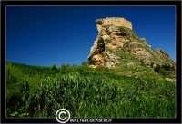 Mussomeli. Castello di Mussomeli. Il castello dei baroni Chiaramonte. Castello Manfredonico.Innalzato con funzioni strategiche, ma anche politiche e di controllo, ad opera di Manfredi III di Chiaramontano, verso il 1370, il castello ha seguito la sorte del vicino borgo (alle falde del monte San Vito), successivamente feudo dei baroni Moncada, De Prades, Castellar, Campo, quindi dei Lancia dal 1549 al 1812.   - Reportage sui Castelli della Provincia di Caltanissetta -   - Mussomeli (3538 clic)